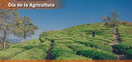 ¿Sabés por qué se celebra hoy el Día de la Agricultura?