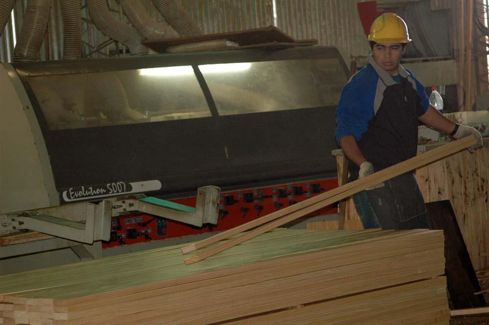 Mesa de Competitividad Foresto-industrial: Madereros exigirán al Gobierno urgentes medidas para reactivar el consumo