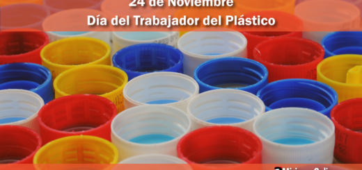 24 de noviembre: Día del Trabajador del Plástico