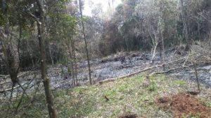 """Ganadero denunció que existen intrusiones, abigeato y apeo ilegal en tierras privadas de San Pedro que """"son apañadas por las autoridades"""""""