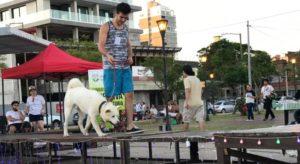 Mascotas y dueños desfilaron en la Costanera a beneficio de El Refugio de Animales