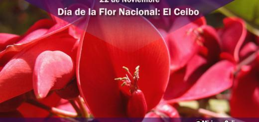 22 de noviembre Día de la Flor Nacional: El Ceibo