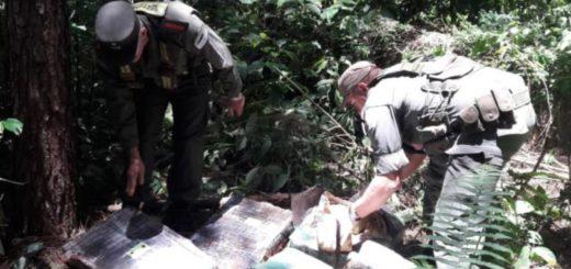 Decomisaron más de 130 kilos de marihuana que habían sido escondidos en un malezal
