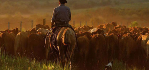 Los trabajadores rurales recibirán el bono de fin de año