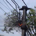 Javier Iguacel renunció a la Secretaría de Energía de la Nación