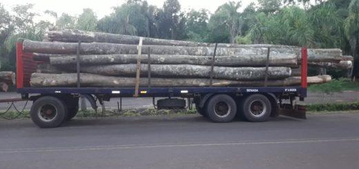 En procedimiento conjunto, Gendarmería y Ecología detuvieron camión con madera nativa sin guía habilitada para transporte