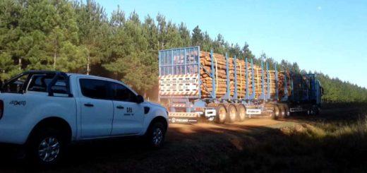Corrientes aprobó la circulación de bitrenes en las rutas de la provincia