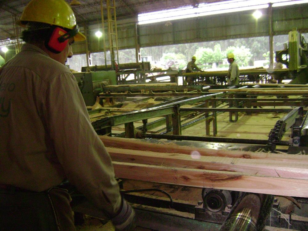 En el sector de la Madera y Mueble el uso de la capacidad instalada de las industrias está en un 45%