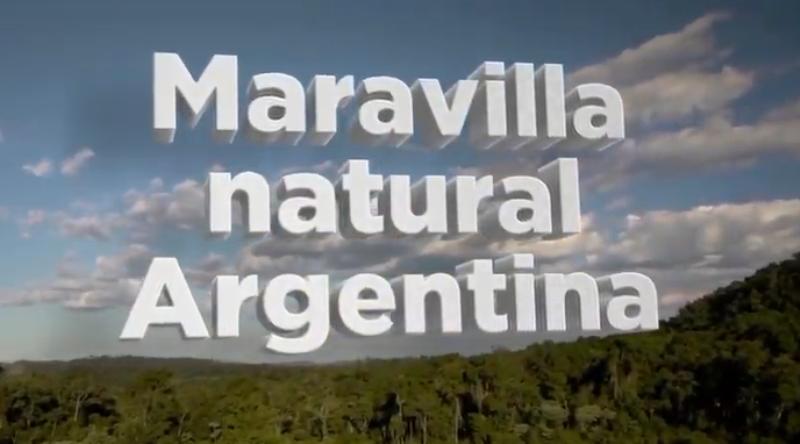 Para continuar preservando nuestra #SelvaMisionera, votá para que se convierta en una Maravilla Natural Argentina
