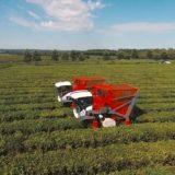 Una empresa metalúrgica de Oberá diseña un prototipo de maquinaria para la cosecha de tabaco
