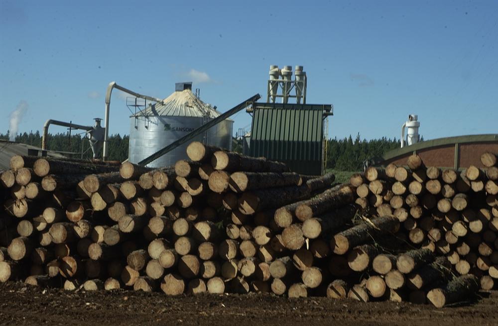 El sector de la industria de la madera cierra uno de sus peores años de las últimas dos décadas