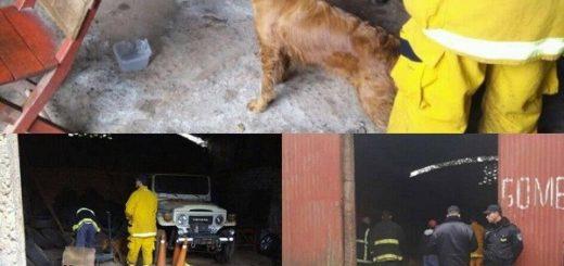 EXPEDIENTES: La desaparición del gomero Milton Schneider desvela a la Policía y a la Justicia de Oberá