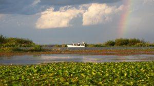 Los Esteros del Iberá ya son Parque Nacional en Corrientes, el mayor en extensión en el país