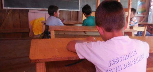"""Declararon """"de interés"""" a programas que buscan prevenir el trabajo infantil y promover la capacitación en el ámbito rural"""