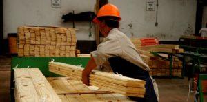 Hubo acuerdo entre empresarios y sindicato maderero por el pago del Bono de Fin Año: en cuotas y por 4 mil pesos