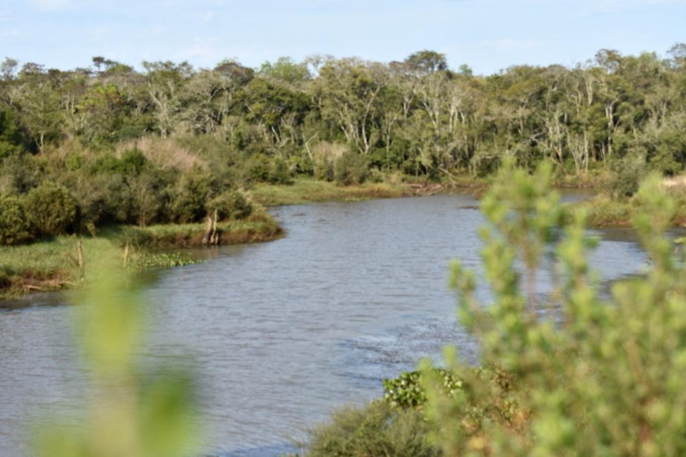 Anunciaron la continuidad del convenio entre Temaikén y la EBY para conservación del área natural Urutaú en Candelaria