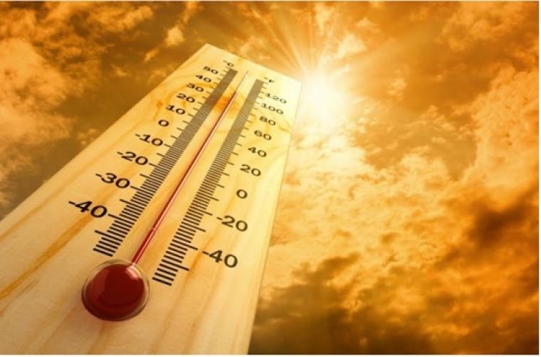 Recomendaciones: beber abundante agua y protegerse del sol ante la ola de calor