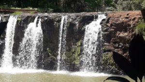 Capioví se prepara para el verano con una oferta turística que reúne lo mejor de la flora y fauna misionera