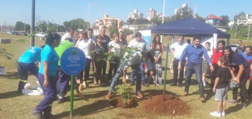 Plantaron el árbol 10 mil en Posadas, un desafío cumplido en éste 2018