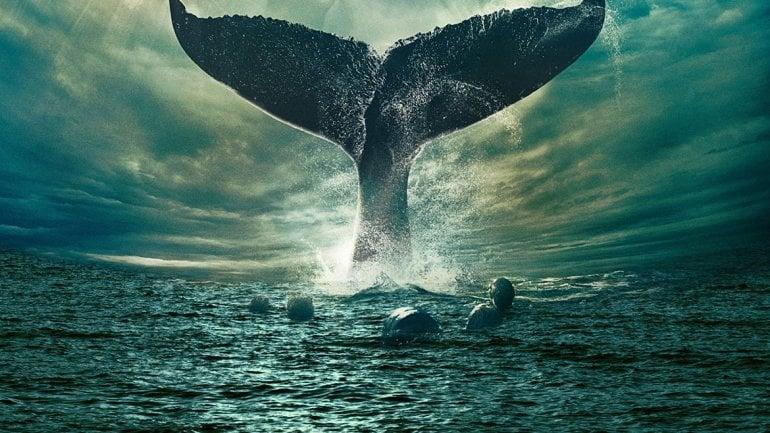 """Investigadores creen que la gigantesca ballena """"Moby Dick"""" estuvo en mares argentinos"""