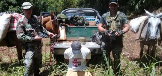 Detuvieron a un cazador furtivo, mientras que otro se dio a la fuga por el monte en el Parque Provincial Urugua-í