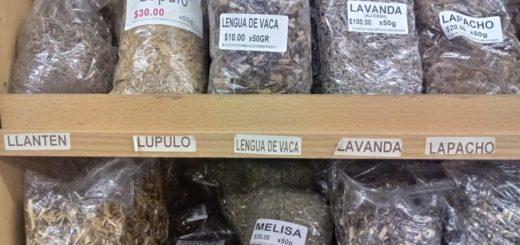 Diuréticas, tranquilizantes, digestivas: el consumo de hierbas medicinales sigue vigente