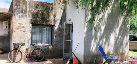 Santa Fe: una mujer de 75 años salió al fondo de su casa y la mataron tres perros mezcla de dogo y pitbull
