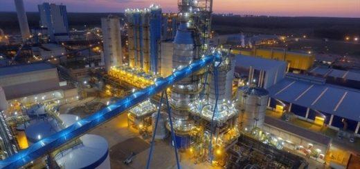 Brasil: este lunes nacerá la nueva Suzano, la mayor productora de celulosa del mundo