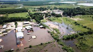Corrientes: sector foresto-industrial pide medidas especiales para hacer frente a la crisis económica y climática de la zona Centro