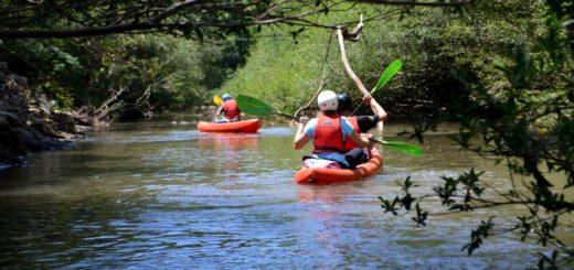 Experiencia Yabotí: este verano los turistas recorren en kayak la selva misionera desde arroyos y saltos en San Pedro