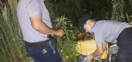 La Policía recuperó objetos robados de un NENI de San Ignacio