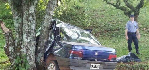 Un joven despistó con su vehículo y perdió la vida en Panambí