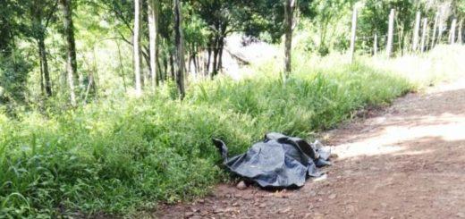 Investigan homicidio en Bernardo de Irigoyen: hallaron el cuerpo de un hombre al costado de un camino