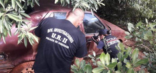 Oberá: encontraron en una zona de monte un vehículo robado