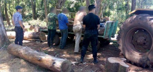 Tenso operativo rural contra el hurto de ganado y apeo ilegal: tres detenidos en El Soberbio