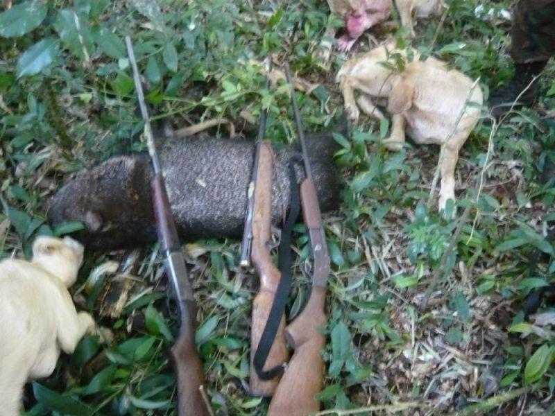 Tras la viralización de un video de cazadores furtivos que matan animales que huyen del agua, prohíben la caza en Corrientes
