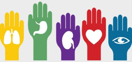 """Desde CUCAIMis aseguran que la tasa de donantes ha crecido en Misiones y el 80% de la población tiene una adhesión """"muy positiva"""""""