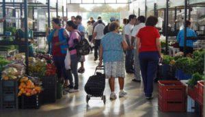 Enero en el Mercado Concentrador de Posadas: pese a ser un mes difícil, destacaron la gran concurrencia de compradores
