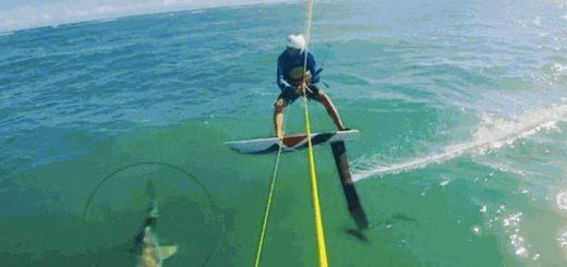 Un deportista dominicano chocó contra un tiburón mientras practicaba Kitesurf