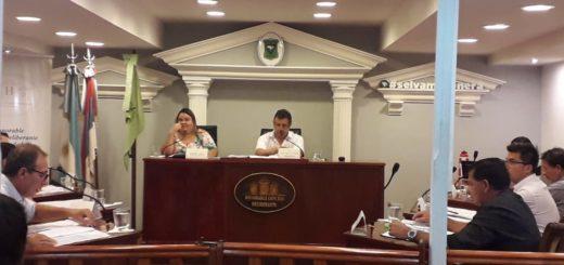 """Mediante una resolución, el Concejo Deliberante de Iguazú exige que se anule el proyecto """"Oportunidades Naturales"""""""