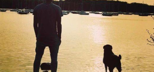 """La conmovedora imagen de """"Nala"""" la perra de Emiliano Sala que sigue esperando a su dueño"""