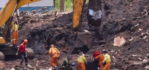 Brasil: el ex presidente de Vale, Fábio Schvartsman, y otras 15 personas fueron denunciadas por la Justicia brasileña por homicidio y delitos ambientales por la ruptura de la presa de la minera de Brumandinho