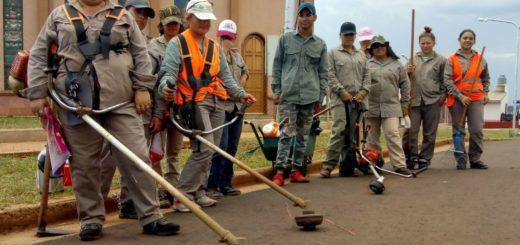 Víctimas de violencia de género formaron una cooperativa en Misiones y trabajan por su independencia económica