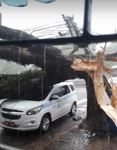 Fotos y videos: un temporal provocó destrozos en Foz de Iguazú