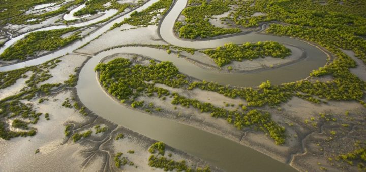 Los humedales como aliados naturales para mitigar los efectos extremos del calentamiento global