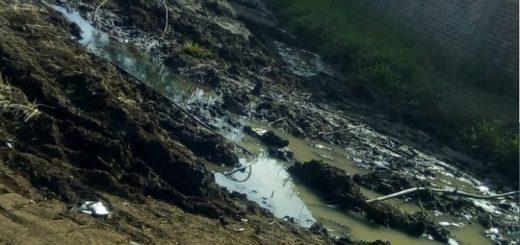 Denuncian conexiones clandestinas de agua en Garupá