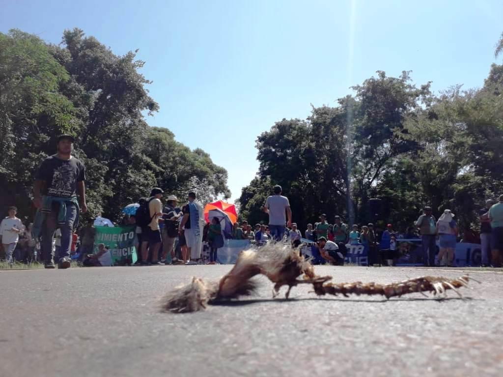 Sigue bloqueado el acceso a Cataratas por la oposición a las Villas Turísticas en el Parque Nacional y los visitantes optan por ir a Brasil