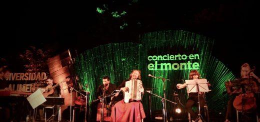 El Parque Temático de La Cruz y el monte misionero, la combinación perfecta para un concierto inolvidable del Chango Spasiuk en Santa Ana