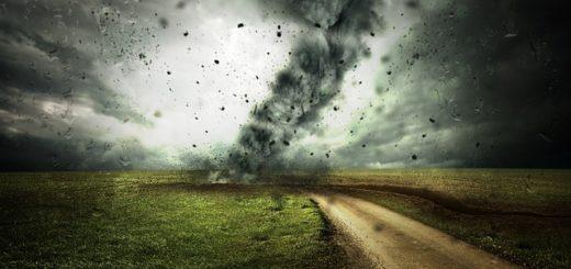 Advierten sobre los efectos del cambio climático en la producción misionera