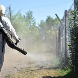 Dengue: en el país hay 1698 casos confirmados, en Misiones 10 de ellos corresponden al serotipo DEN-4